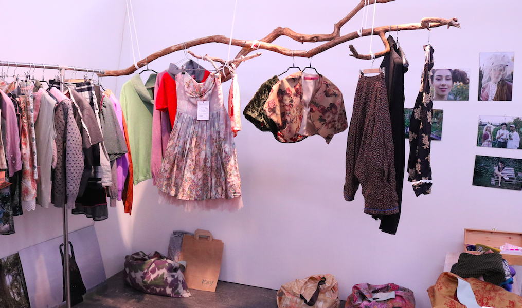 branch with clothes on hangers